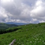 夏休みは高原へ