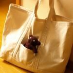 CHECK&STRIPE STANDARDで、帆布のトートバッグを作りました。