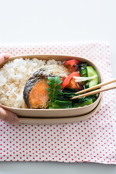 how-to-refrigerate-magewappa-bento-2