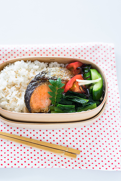 how-to-refrigerate-magewappa-bento-3