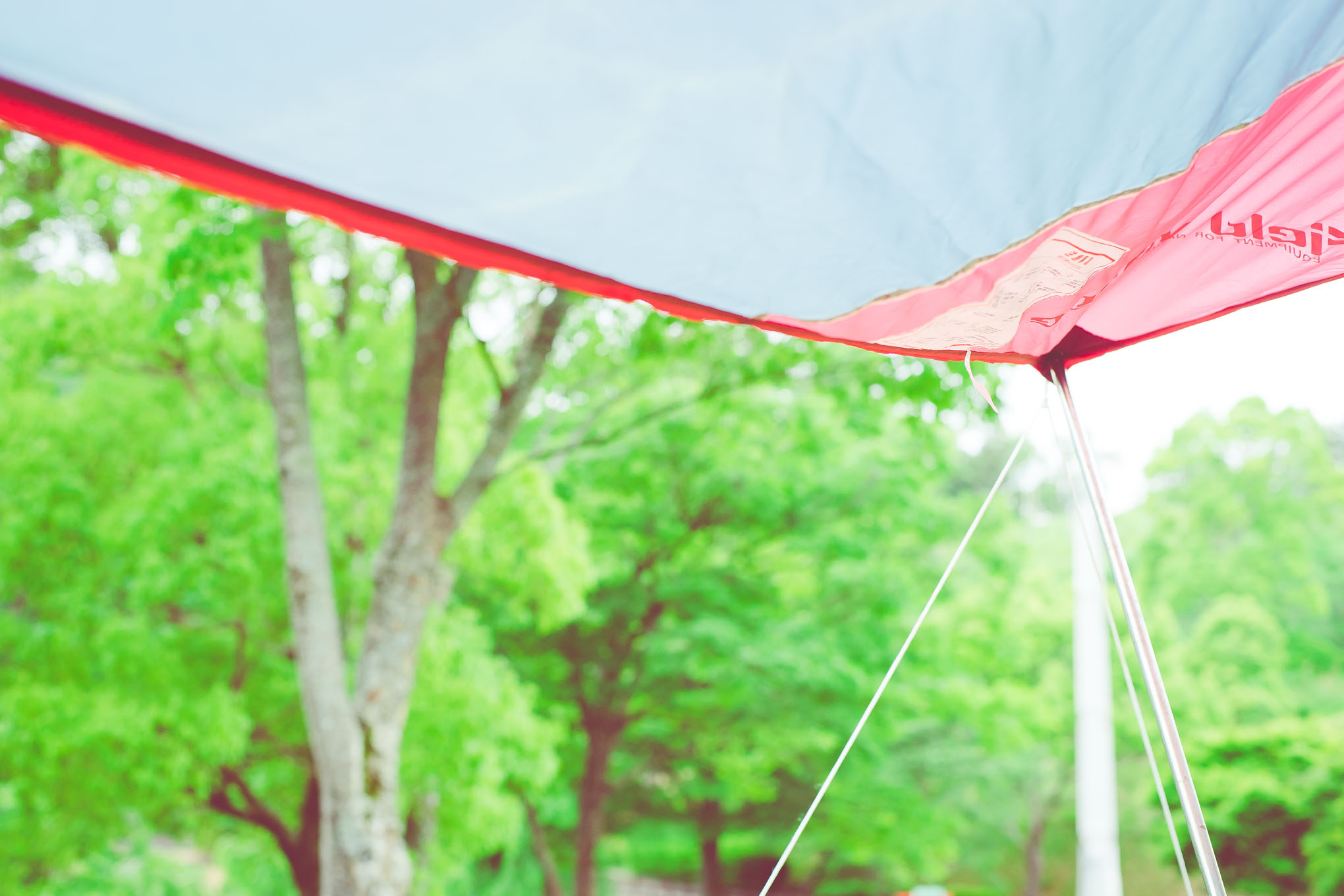 magewappa-picnic-in-kamiyama-5