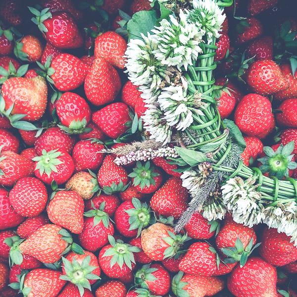 食べきれないほどのイチゴ。