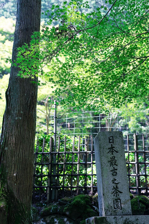 kyoto-kosanji-201608-2