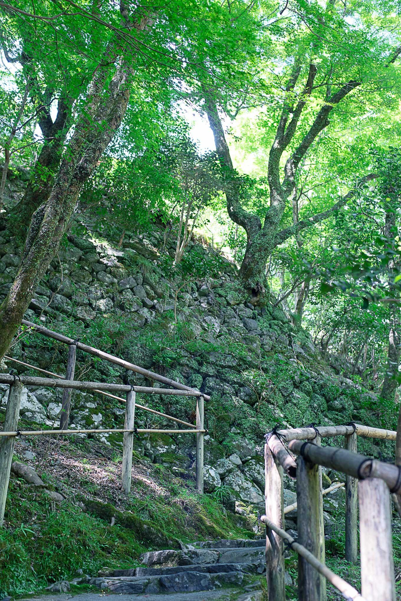 kyoto-kosanji-201608-5