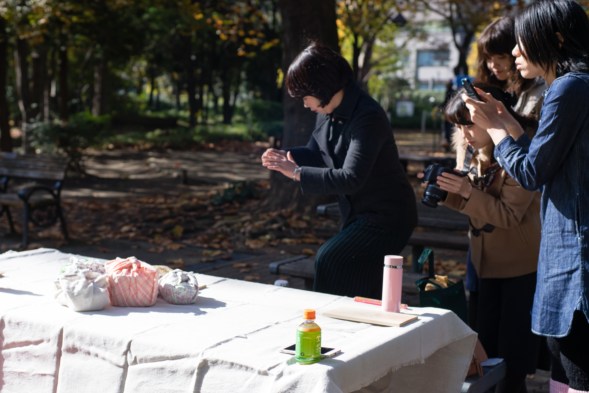 magewappa-picnic-in-tokyo-info-2016-42