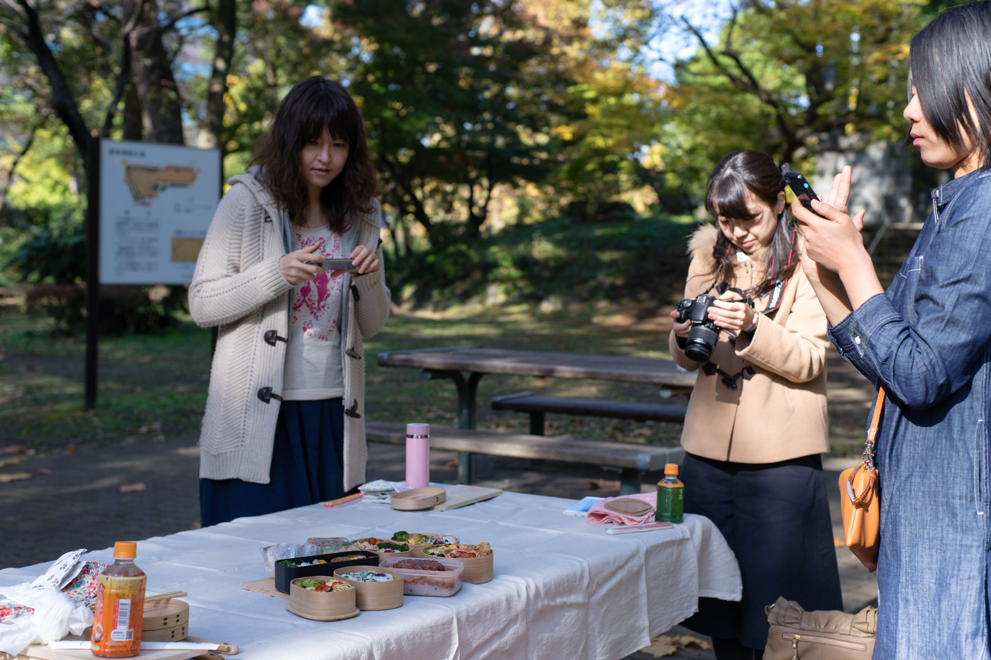 magewappa-picnic-in-tokyo-info-2016-52
