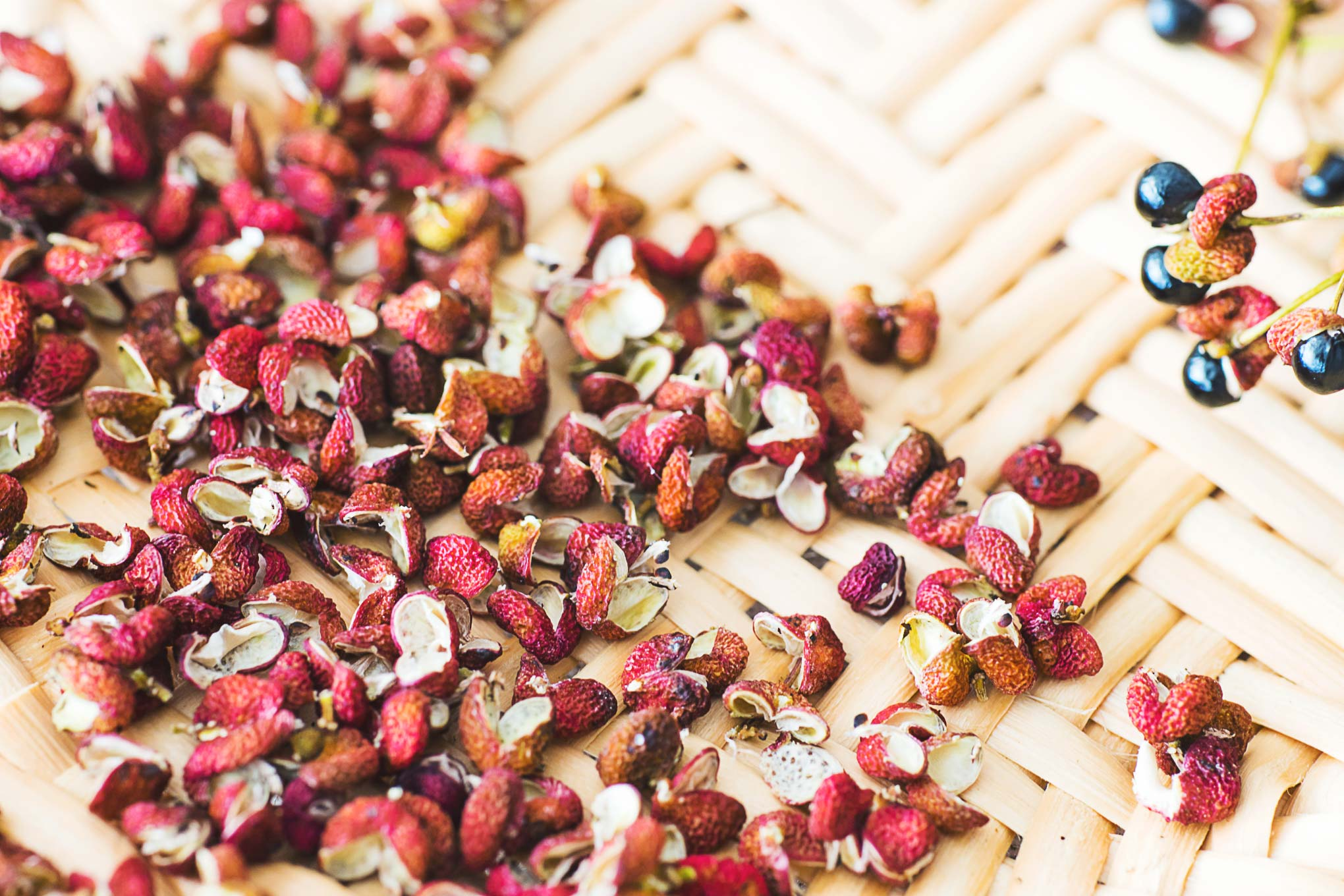 シビれる辛さが好きな人に。完熟の山椒の実が売ってたので花山椒を手作りしました
